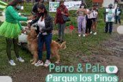 Perro y Pala, ¡si tu perro 🐕 se hace, tú no te hagas!