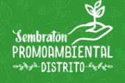 Cerca de 500 árboles nativos fueron plantados en los cerros orientales de Bogotá durante las jornadas de Sembratón de Promoambiental Distrito.
